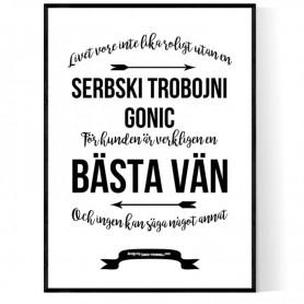 Livet Med Serbski Trobojni Gonic Poster