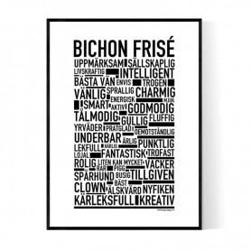 Bichon Frisé Poster