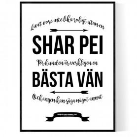 Livet Med Shar Pei Poster