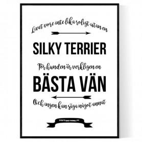 Livet Med Silky Terrier Poster