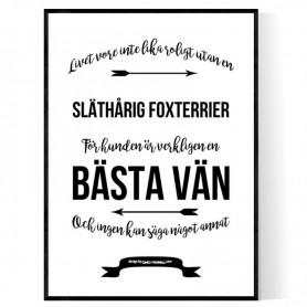 Livet Med Släthårig Foxterrier Poster
