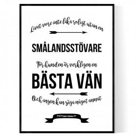Livet Med Smålandsstövare Poster