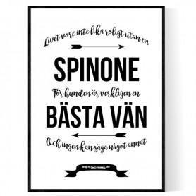 Livet Med Spinone Poster