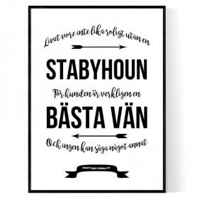 Livet Med Stabyhoun Poster