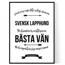 Livet Med Svensk Lapphund Poster
