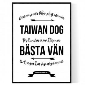 Livet Med Taiwan Dog Poster