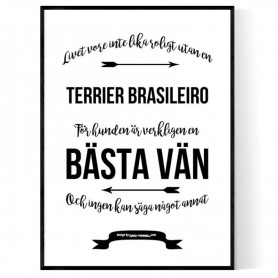 Livet Med Terrier Brasileiro Poster