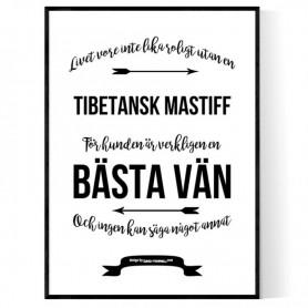 Livet Med Tibetansk Mastiff Poster