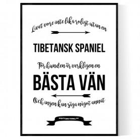 Livet Med Tibetansk Spaniel Poster