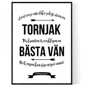 Livet Med Tornjak Poster