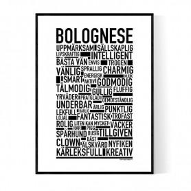 Bolognese Poster
