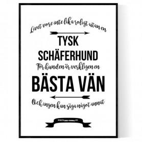 Tysk Schäferhund Poster
