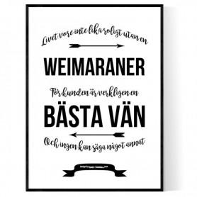 Livet Med Weimaraner Poster