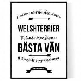 Livet Med Welshterrier Poster