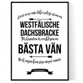 Livet Med Westfälische Dachsbracke Poster