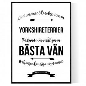 Livet Med Yorkshireterrier Poster