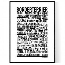 Borderterrier Poster
