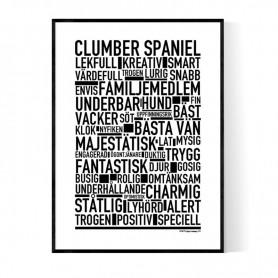 Clumber Spaniel Poster