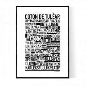 Coton De Tuléar Poster