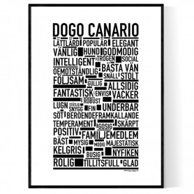 Dogo Canario Poster