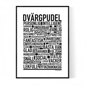 Dvärgpudel Poster