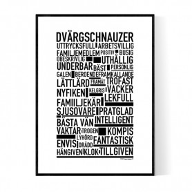Dvärgschnauzer Poster