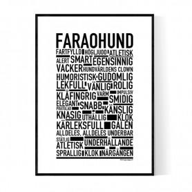 Faraohund Poster