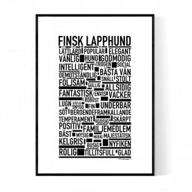Finsk Lapphund Poster