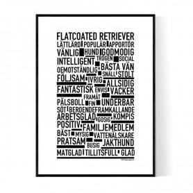 Flatcoated Retriever Poster