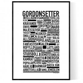 Gordonsetter Poster