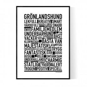 Grönlandshund Poster