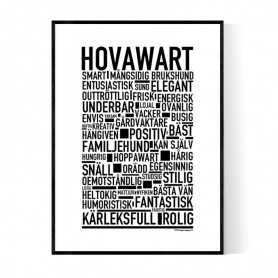 Hovawart Poster