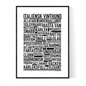 Italiensk Vinthund Poster