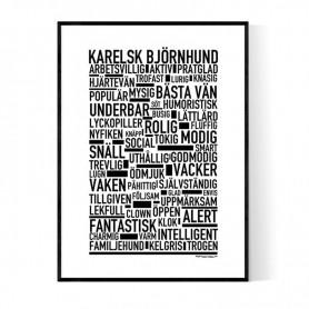Karelsk Björnhund Poster