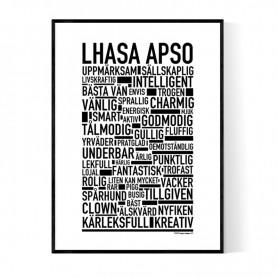 Lhasa Apso Poster