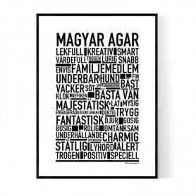 Magyar Agar Poster
