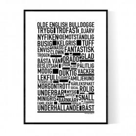 Olde English Bulldogge Poster