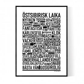 Östsibirisk Laika Poster