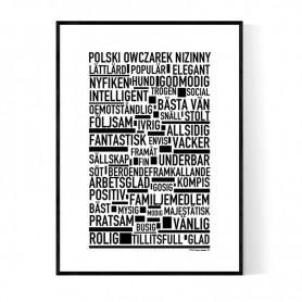 Polski Owczarek Nizinny Poster
