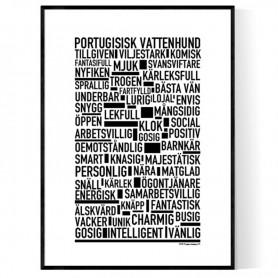Portugisisk Vattenhund Poster