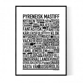 Pyreneisk Mastiff Poster