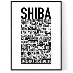 Shiba Poster