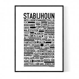 Stabijhoun Poster