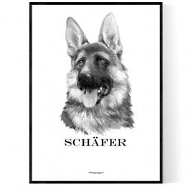 Schäfer Portrait Poster