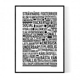 Strävhårig Foxterrier Poster