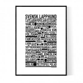 Svensk Lapphund Poster