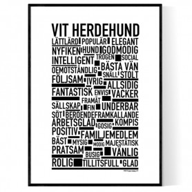 Vit Herdehund Poster