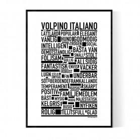 Volpino Italiano Poster