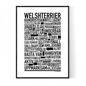 Welshterrier Poster