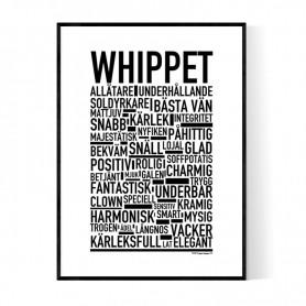 Whippet Poster